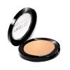 Pastel Pro Fashion Wet&Dry Terracotta Powder 51