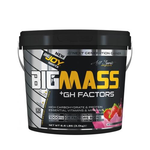 Big Joy Big Mass Gainer + Gh Factors Çilek 3000 Gr
